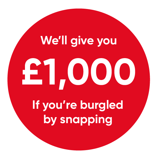 We''ll give you £1,000 if you're burgled by snapping.
